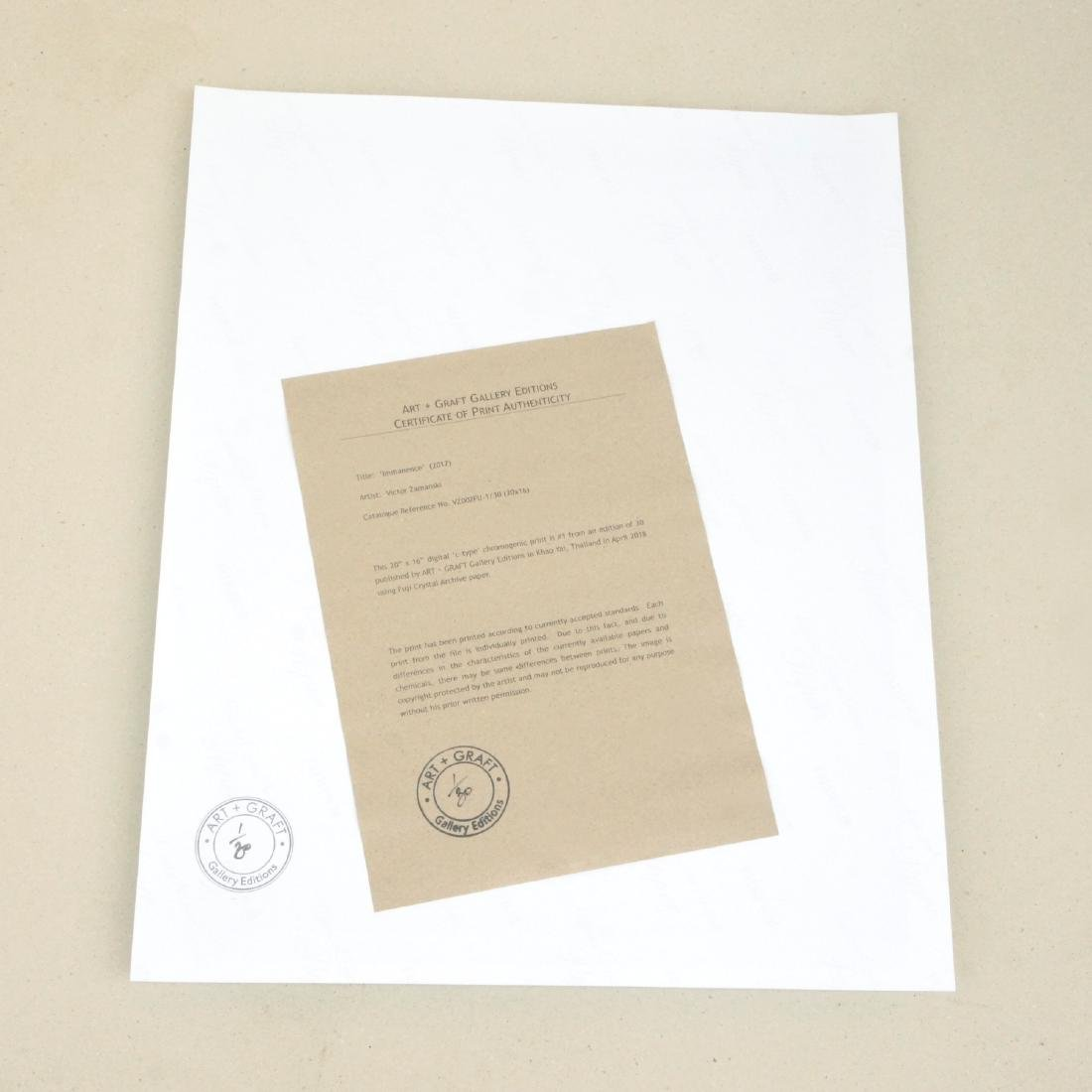 Victor Zamanski Print Immanence - 3