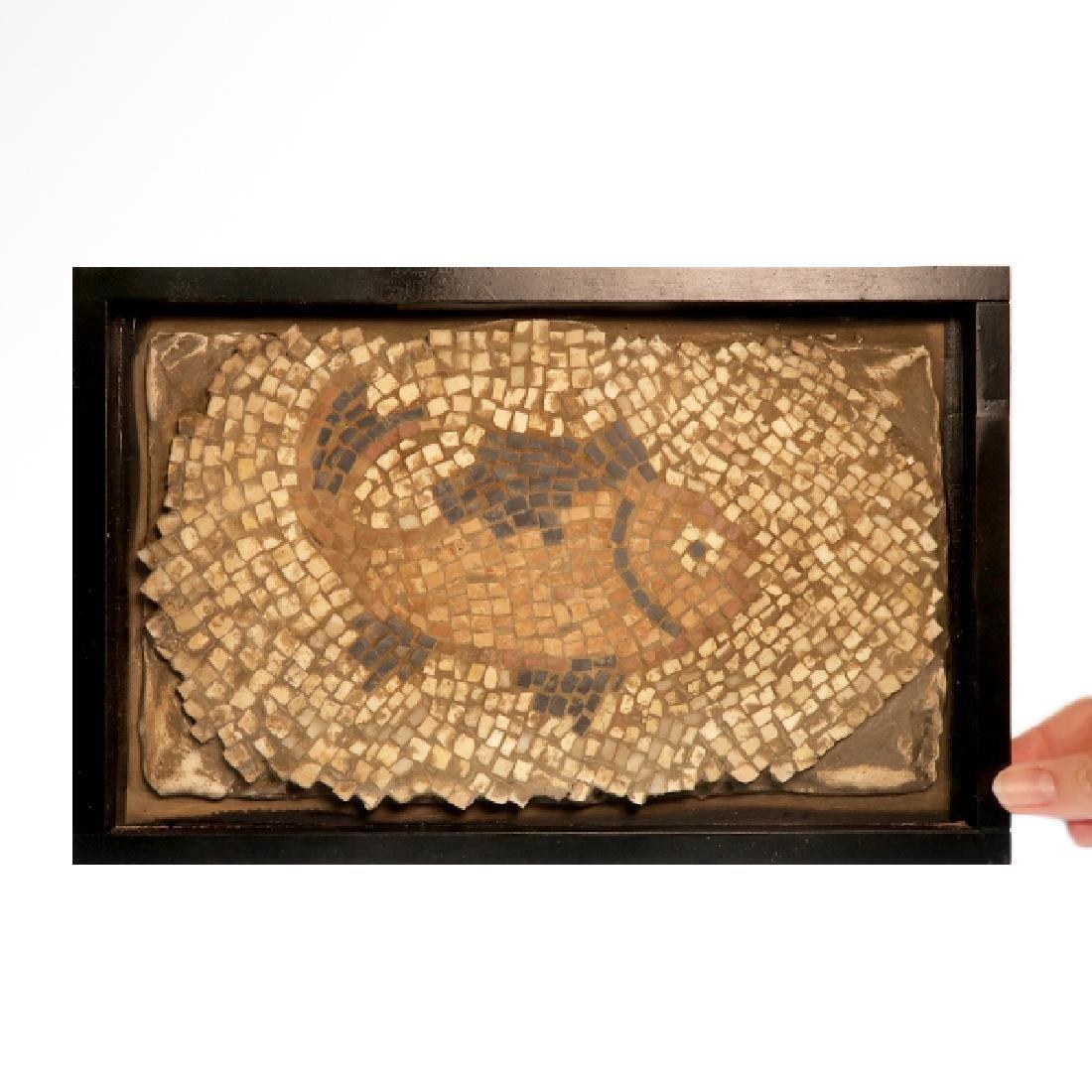 Roman Mosaic Panel with Fish, c. 4th-6th Century A.D. - 3