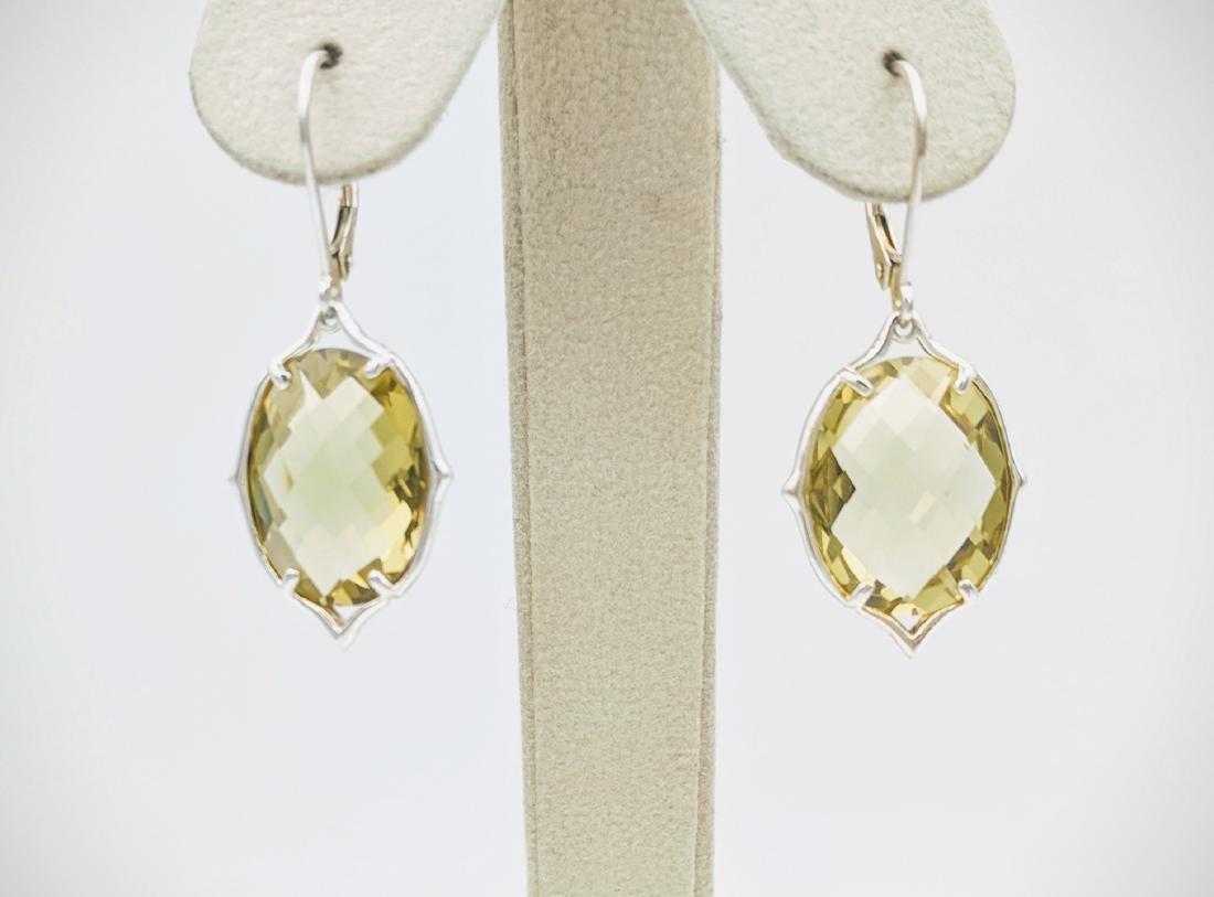 Sterling Silver Beryl Earrings, 17.56ctw