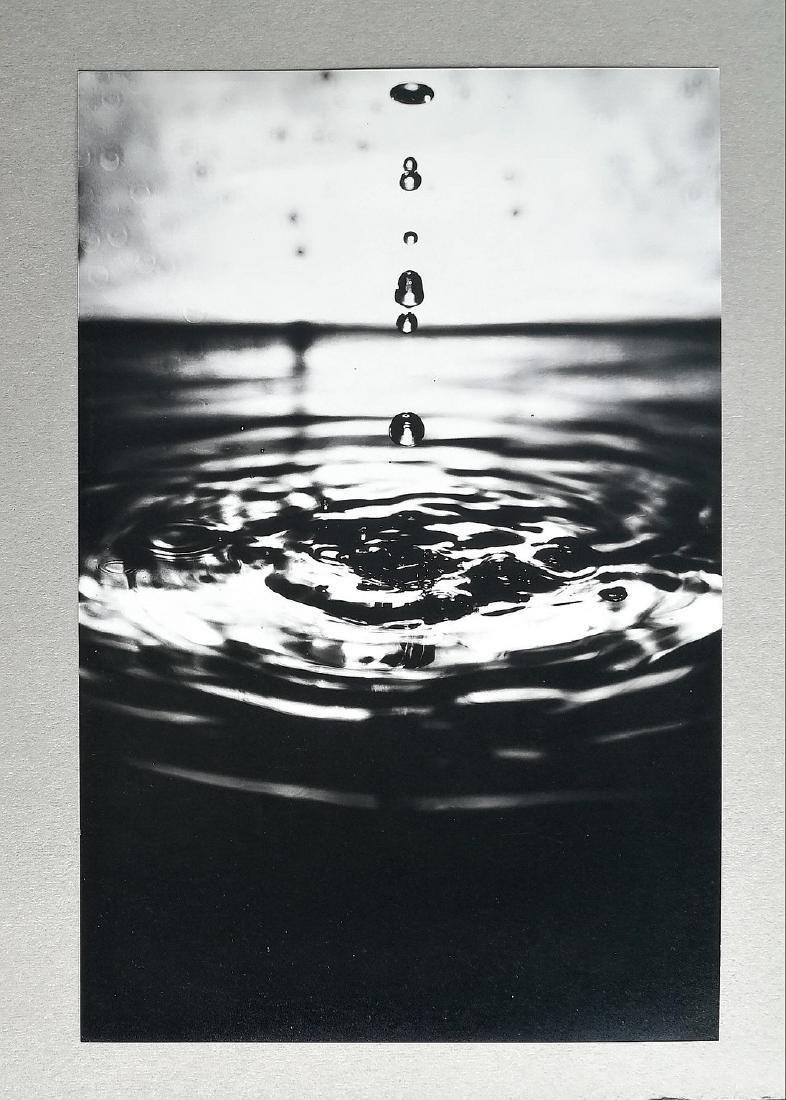 2xFederico Pacini (1977-) Goccia, 2003 - 6