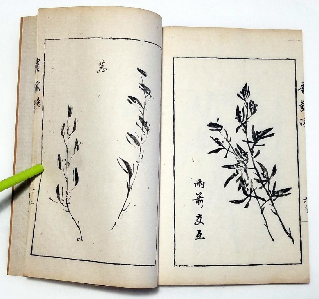 Southern China Ink Painting Guide: Ming & Qing 4vs 1911 - 5