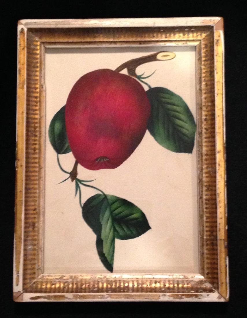 C1850 Original Watercolor/ Theorem Gold Leaf Frame