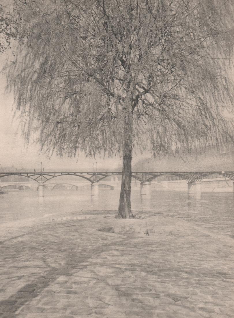 SOUGEZ - River Scene