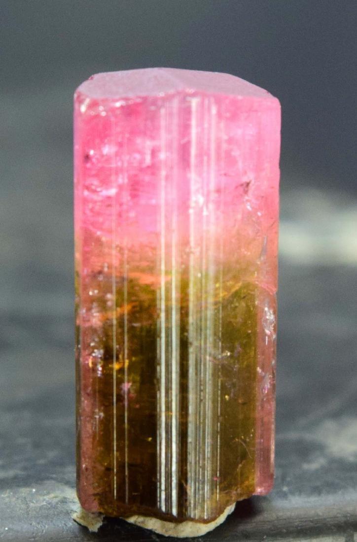 13.50 carats terminated and undamaged bi-color