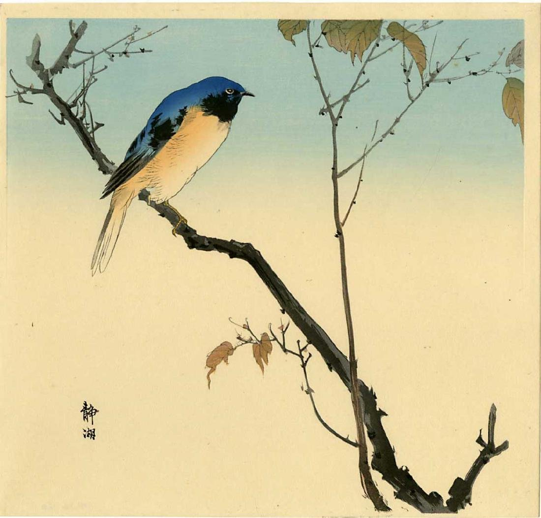 Seiko Okuhara Woodblock Bluebird Perched on a Branch