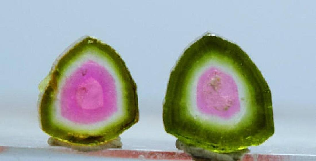 3.95 ct Perfectly Shaped Watermelon Tourmaline Slices - 4