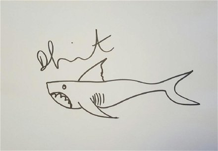 Shark Sketch Damien Hirst Jun 05 2018 Jasper52 In Ny
