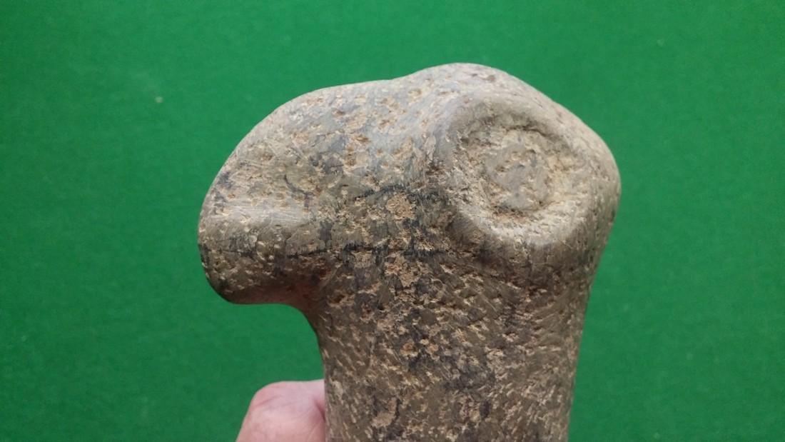 Pre-Columbian Bird Effigy Hand Maul - 5