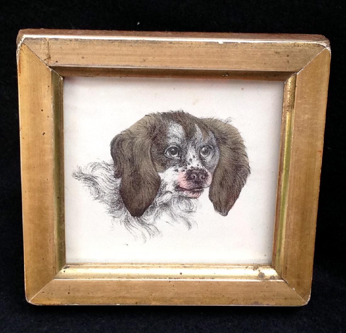 1855 Hand Colored Dog Engraving 19th C Gold Leaf Frame