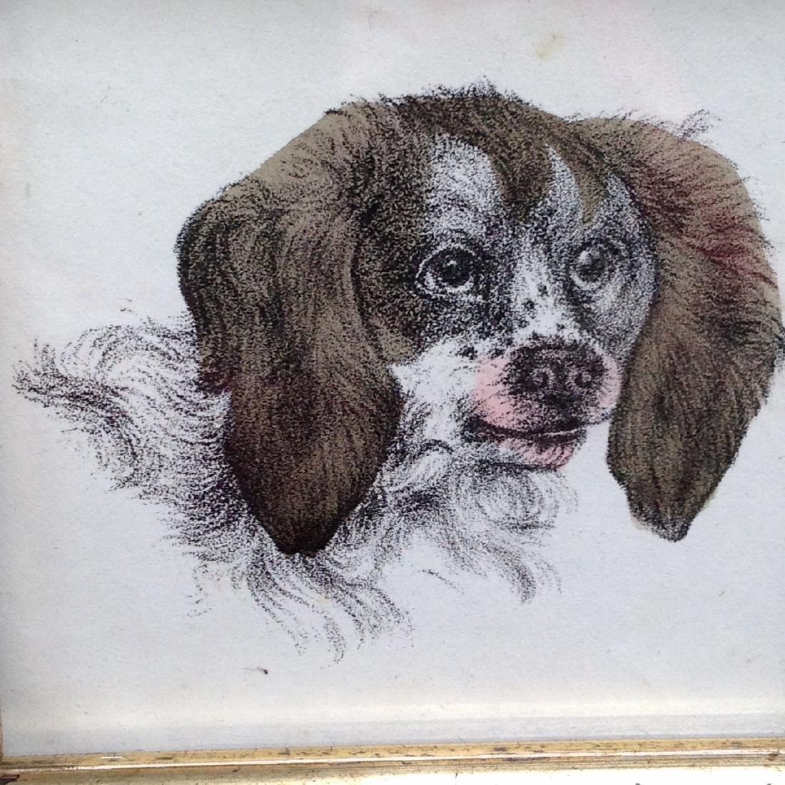 1855 Hand Colored Dog Engraving 19th C Gold Leaf Frame - 2