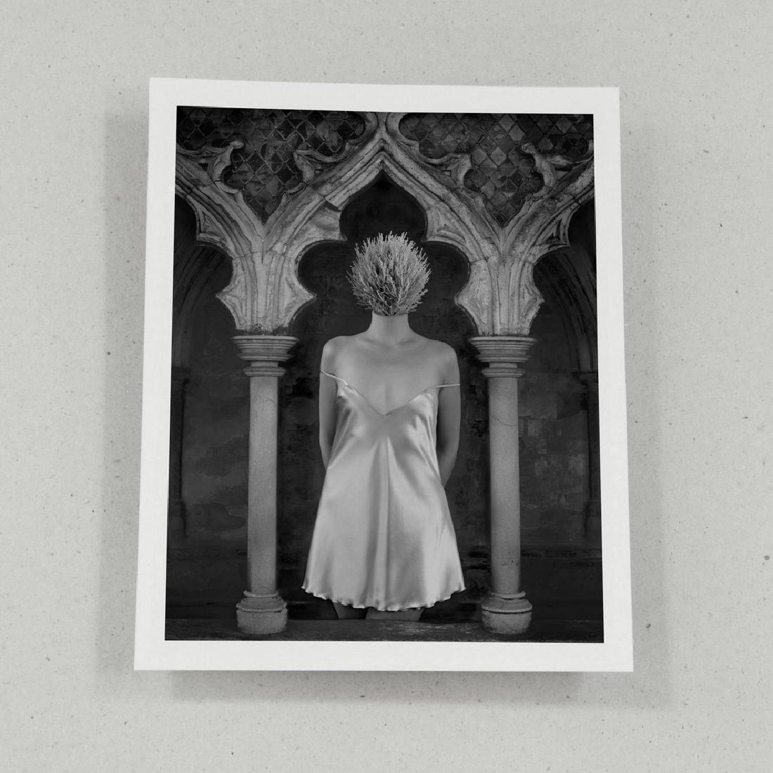 Dominic Rouse Print Deceptions Folio - 4