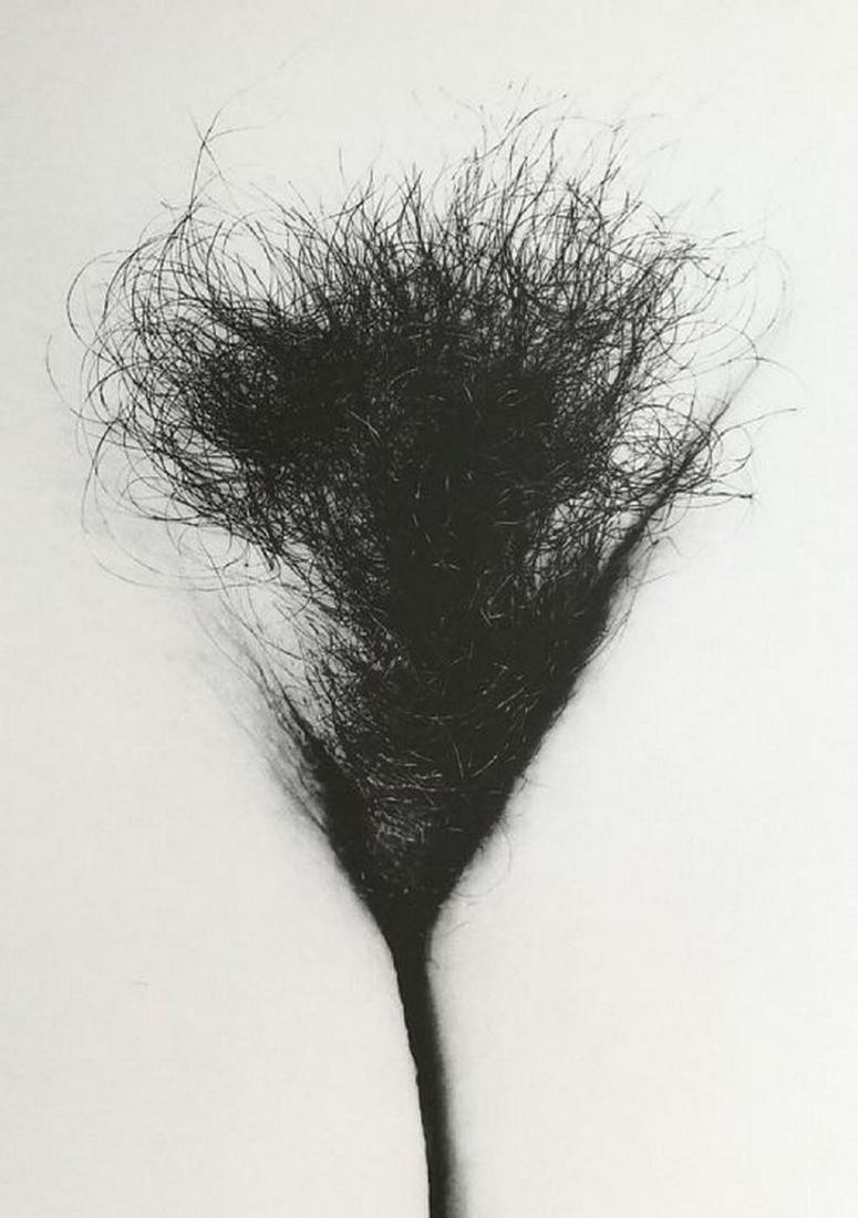 4x Senza Titolo, 2005 - Federico Pacini - 4
