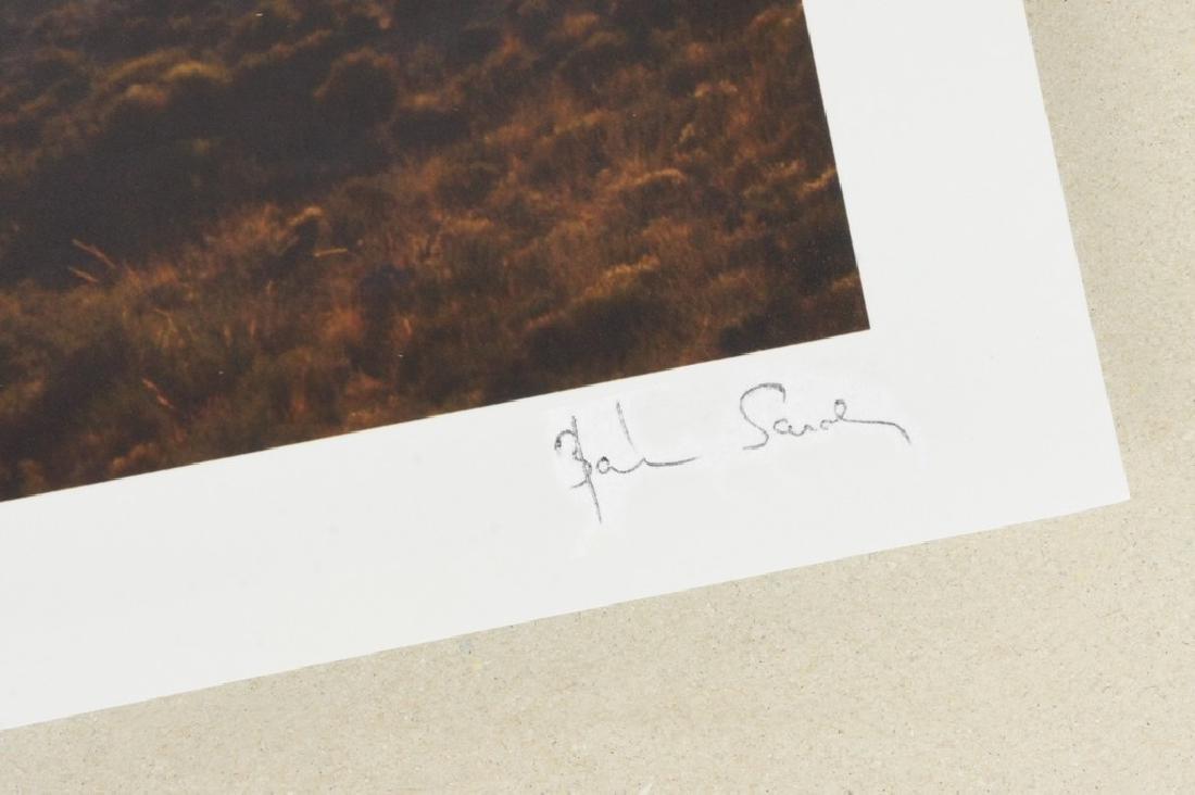Sarolta Bán Print Concerto Pastorale - 4
