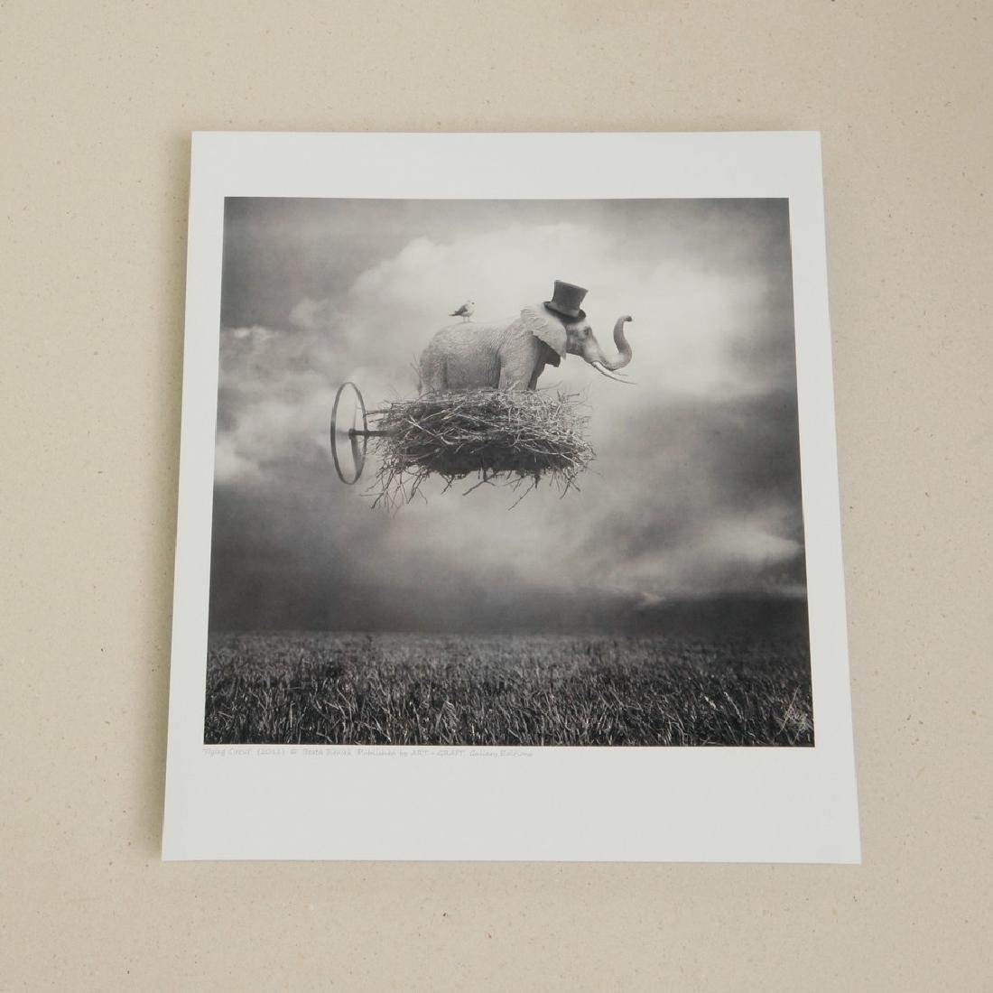 Beata Bieniak Print Flying Circus