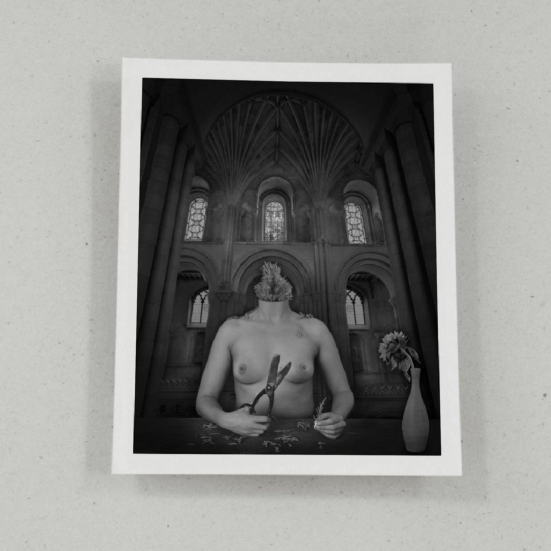 Dominic Rouse Print Vanitas Folio - 2