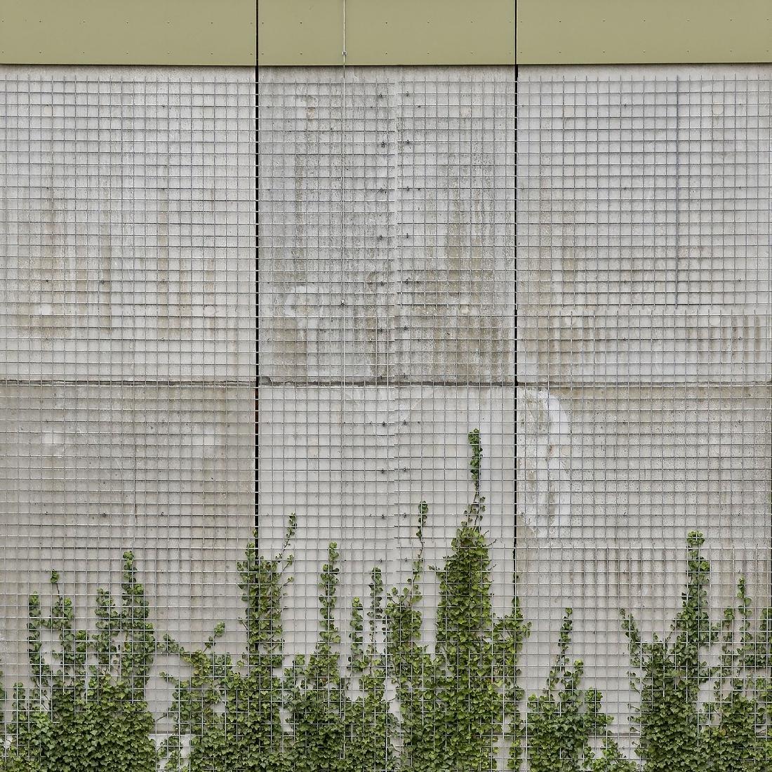Chris Fraikin Photograph Iron Wall