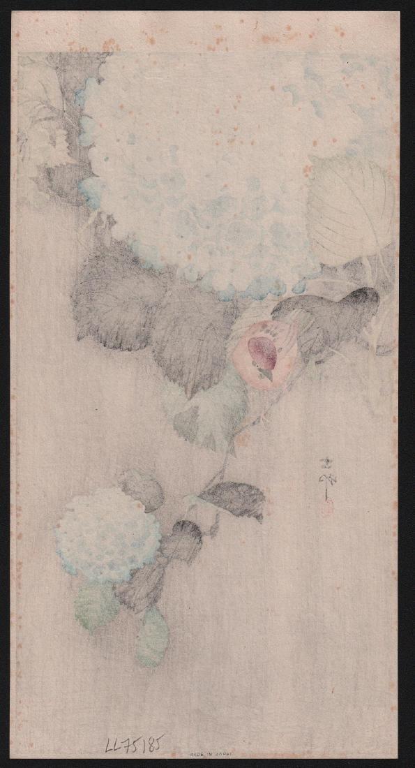 Ohara Koson Woodblock Sparrow on Hydranga - 2