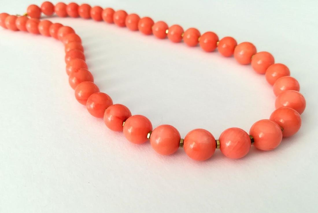 Coral necklace of the Mediterranean with gold clasp