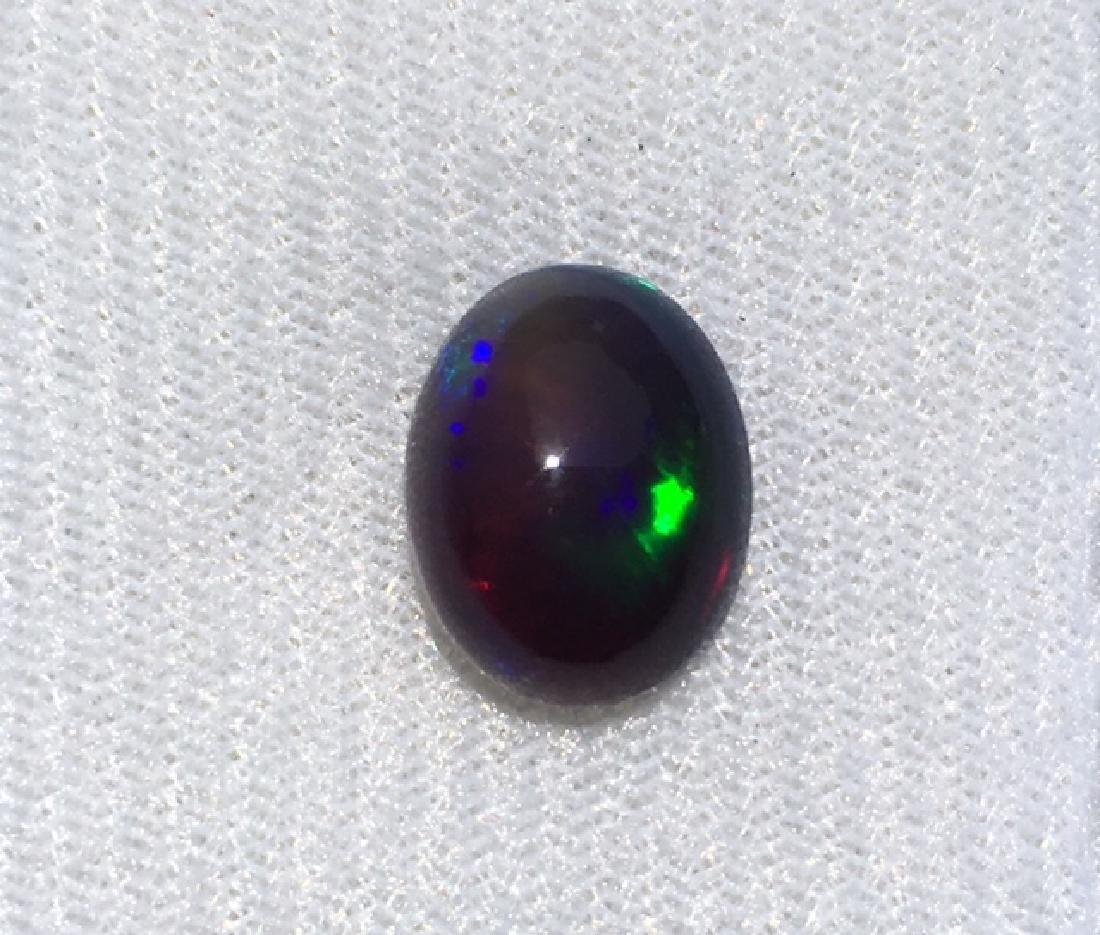 Black Opal bluish