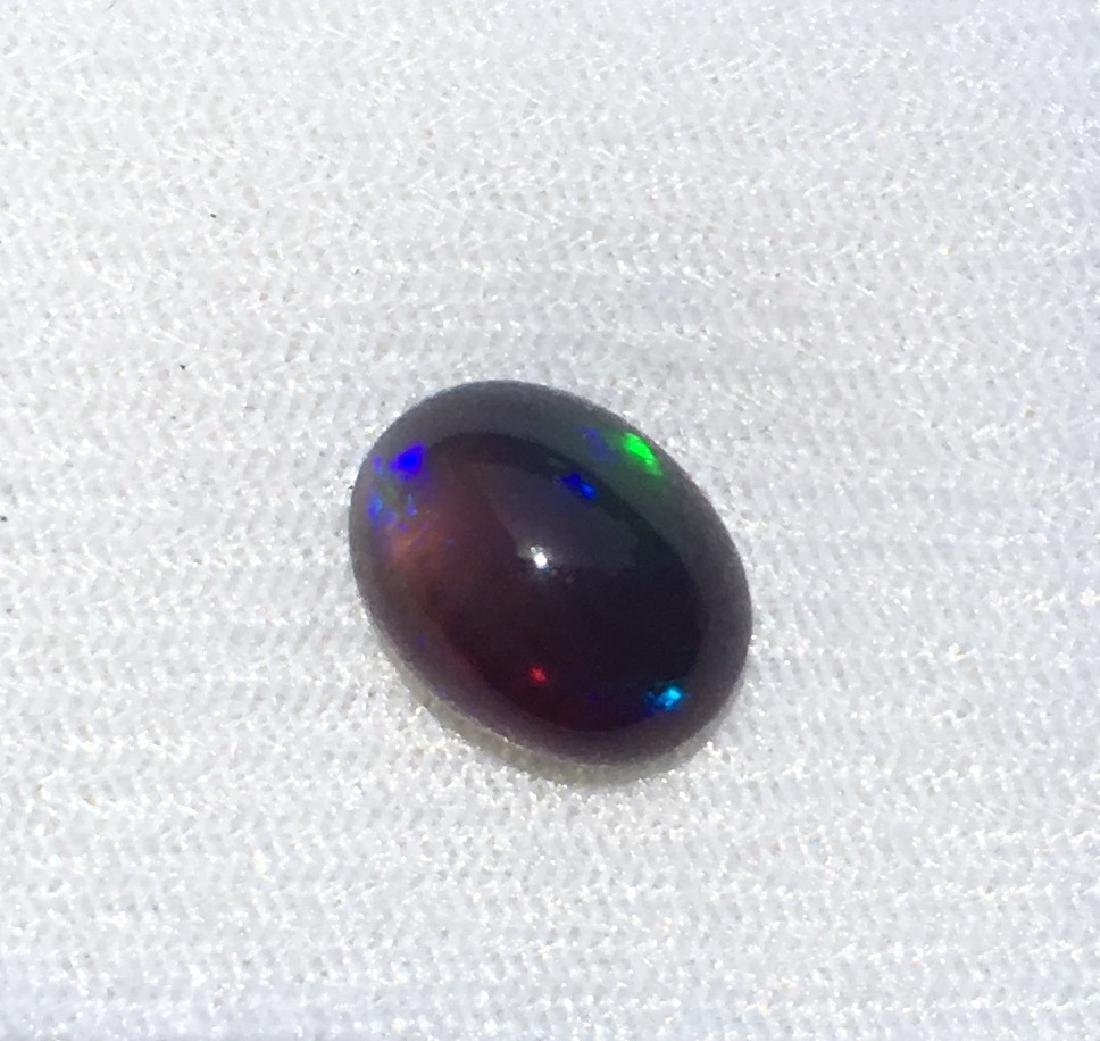 Black Opal bluish - 4