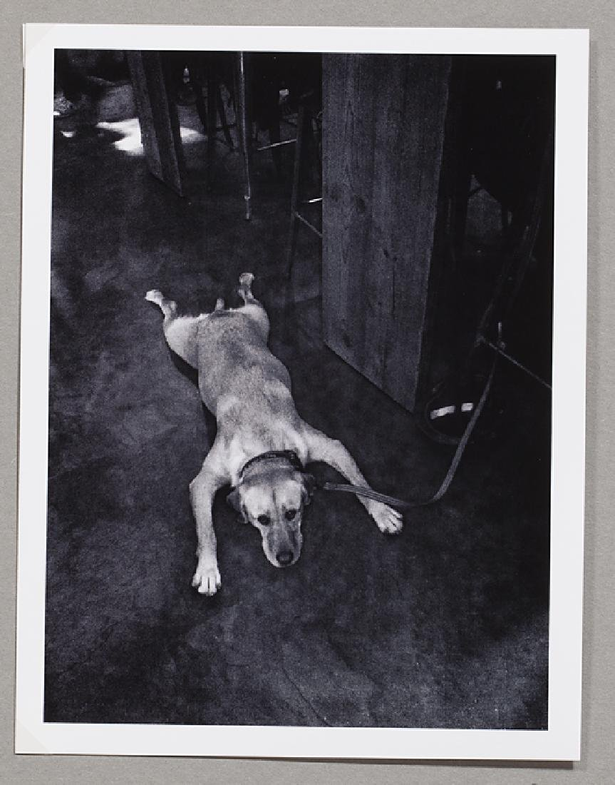 Greg Mascot (1975) Bored Dog Print Signed