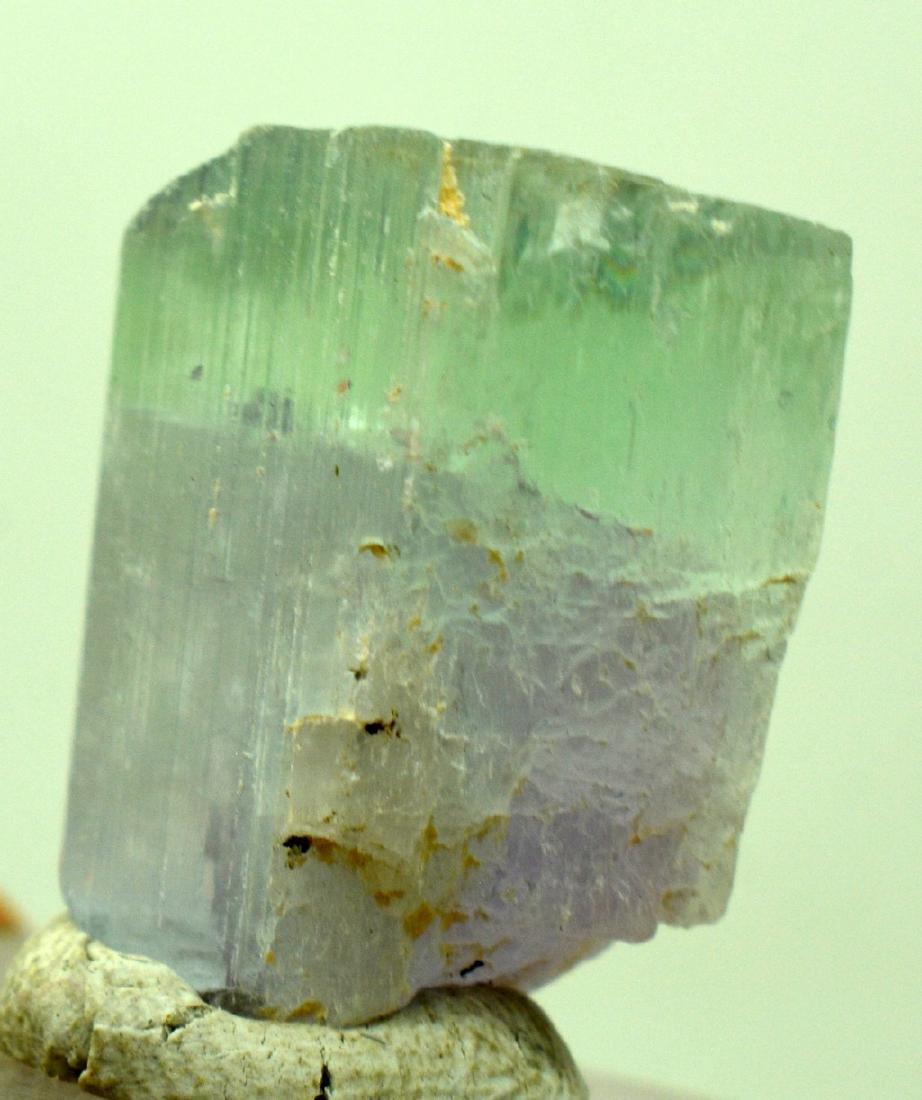 Natural Bi Color Kunzite Crystal - 2