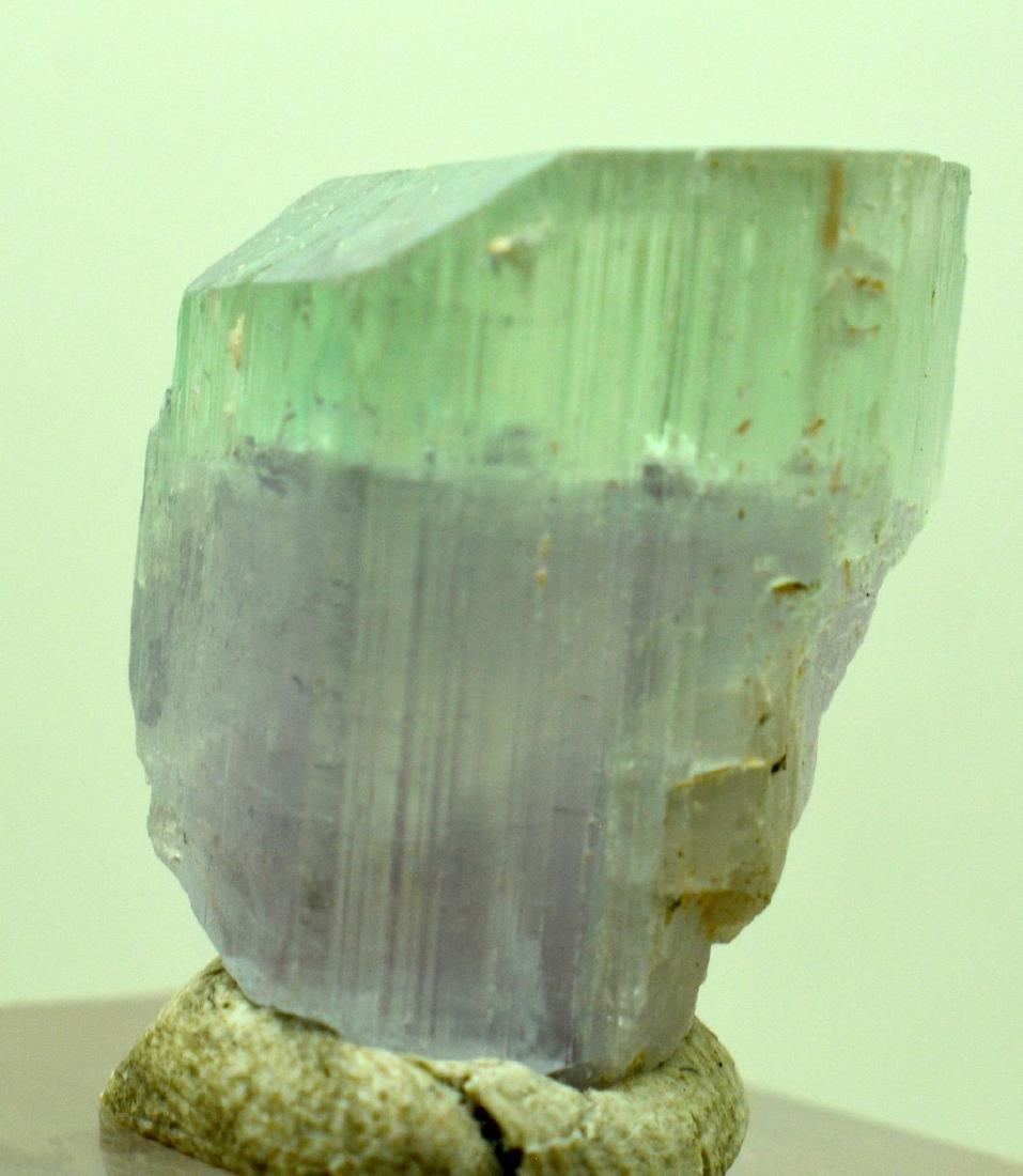 Natural Bi Color Kunzite Crystal - 3