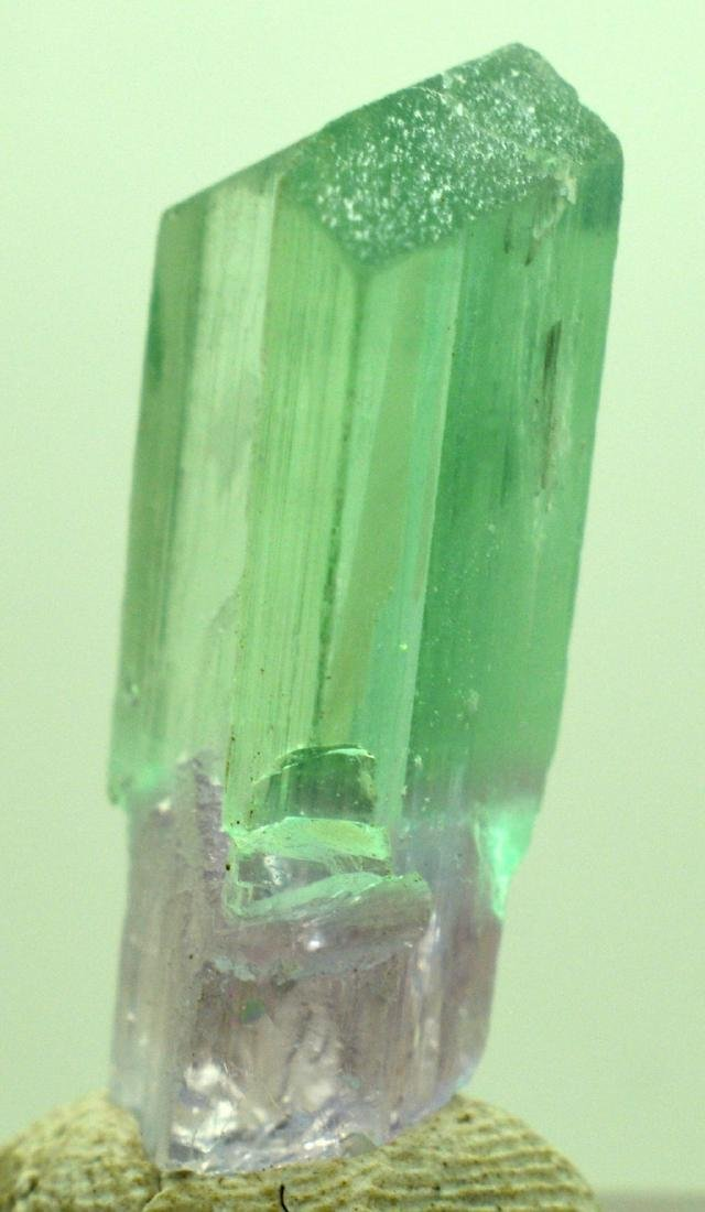 Natural Bi Color Kunzite Crystal - 6