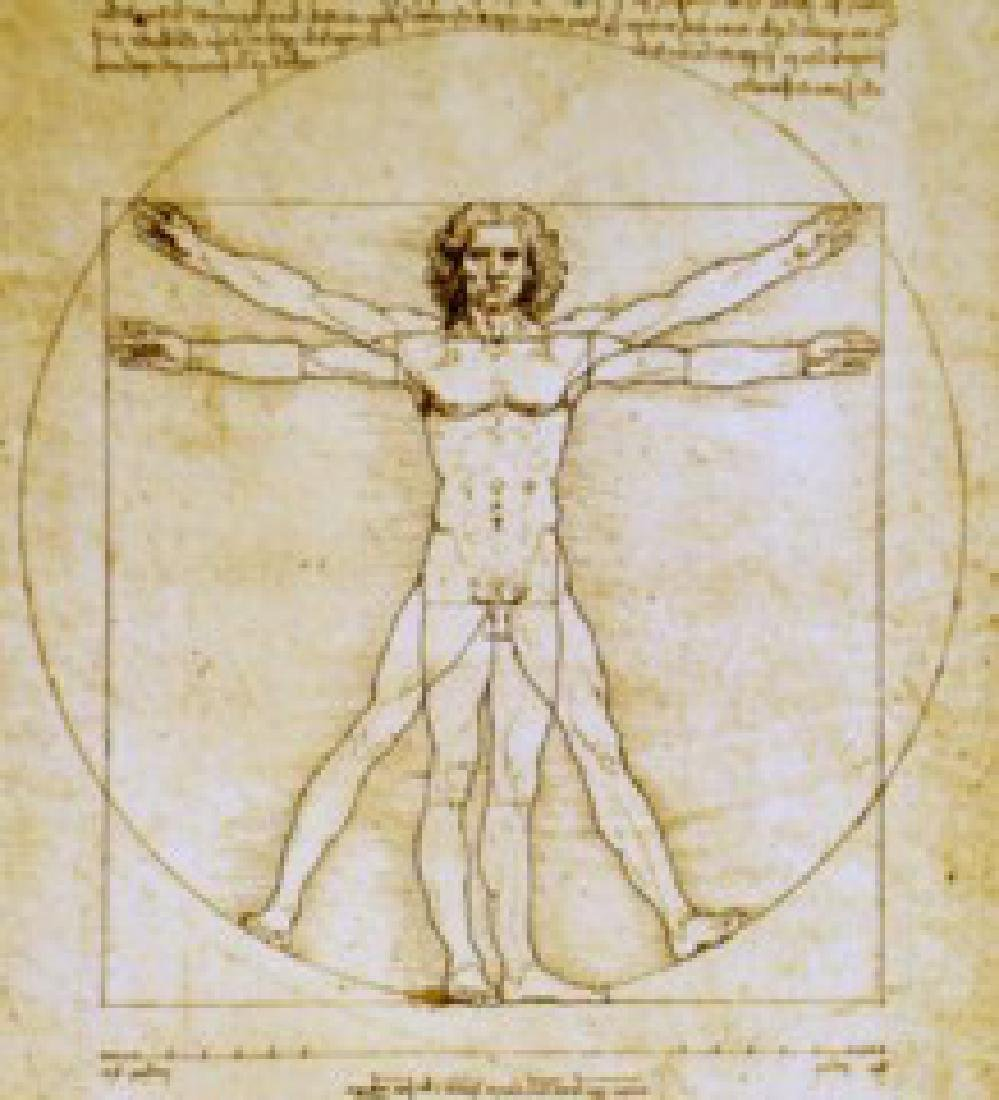 After Leonardo da Vinci: Vitruvian Man Dark Statue - 4
