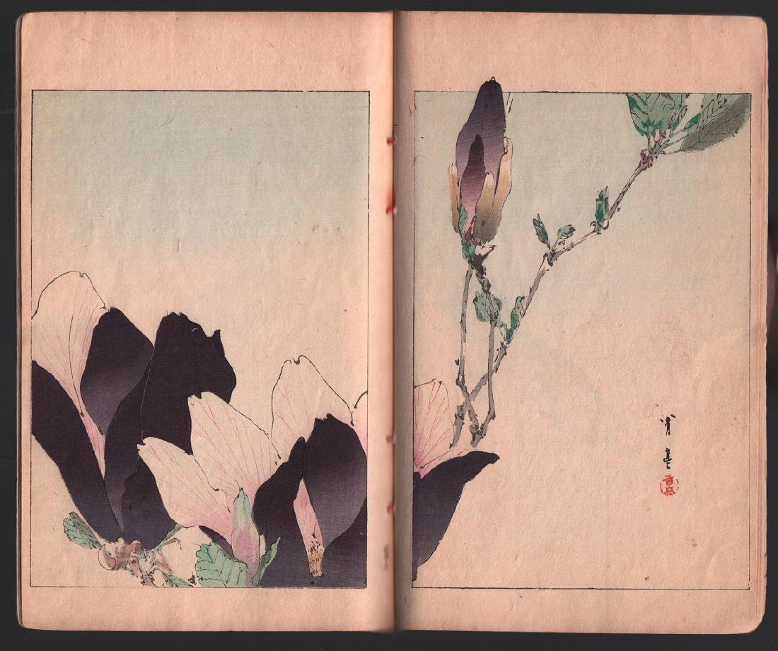 Watanabe Seitei Woodblock Bird & Nature Ehon 25 Pages - 3
