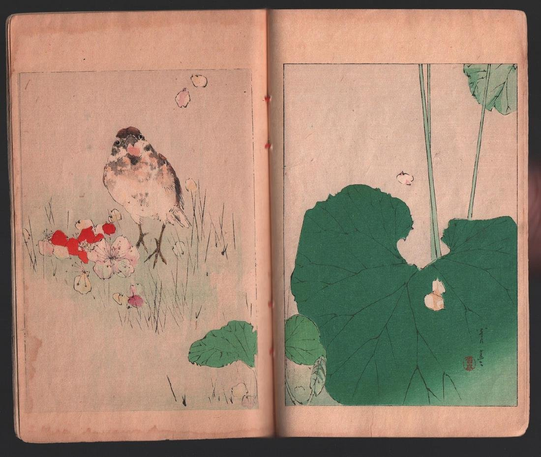 Watanabe Seitei Woodblock Bird & Nature Ehon 25 Pages - 4