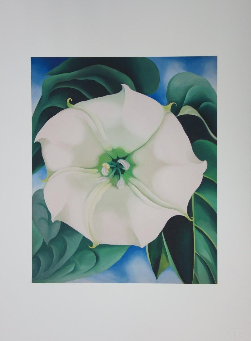 Georgia O'KEEFFE  (after): Jimson Weed, White Flower