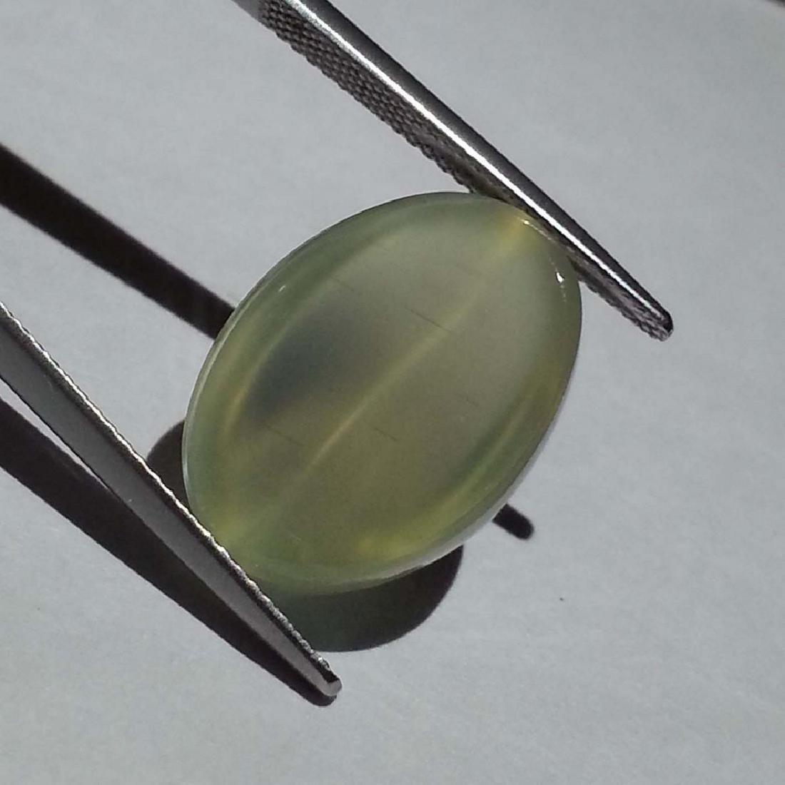 Green Moonstone Cat's Eye - 15.10 ct - 4