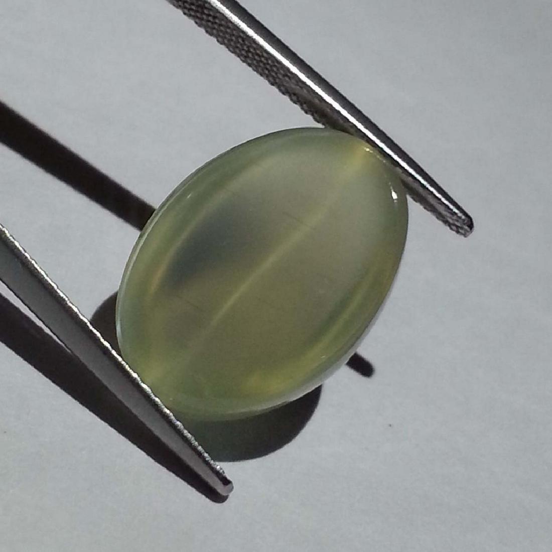 Green Moonstone Cat's Eye - 15.10 ct - 5