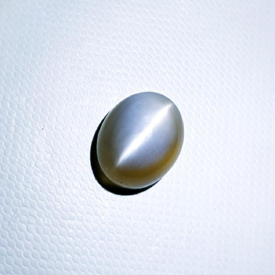 Grey Moonstone Cat's Eye - 9.95 ct