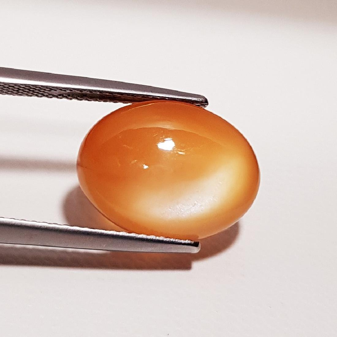Orange Moonstone - 6.51 ct - 2