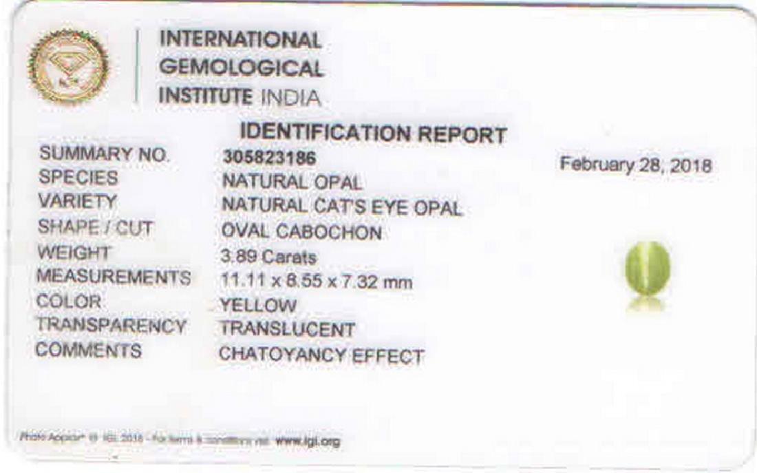 IGI CERTIFIED Opal Cat's Eye - 3.89 ct - 5