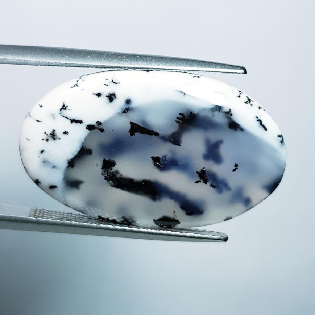 Dendritic Opal - 21.94 ct - 2
