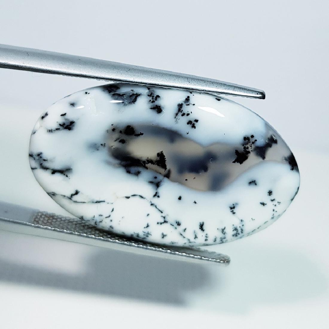 Dendritic Opal - 21.94 ct - 3
