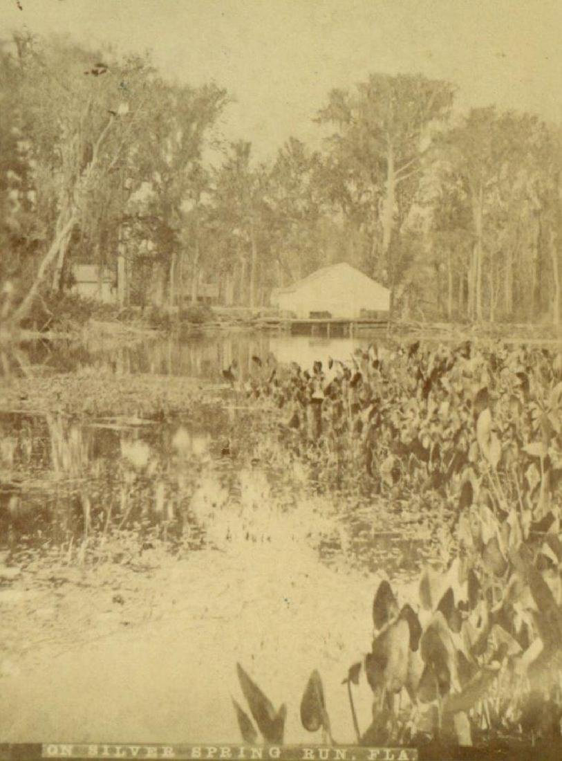 1880 VIEW on SILVER SPRING RUN Florida FL GEORGE'S