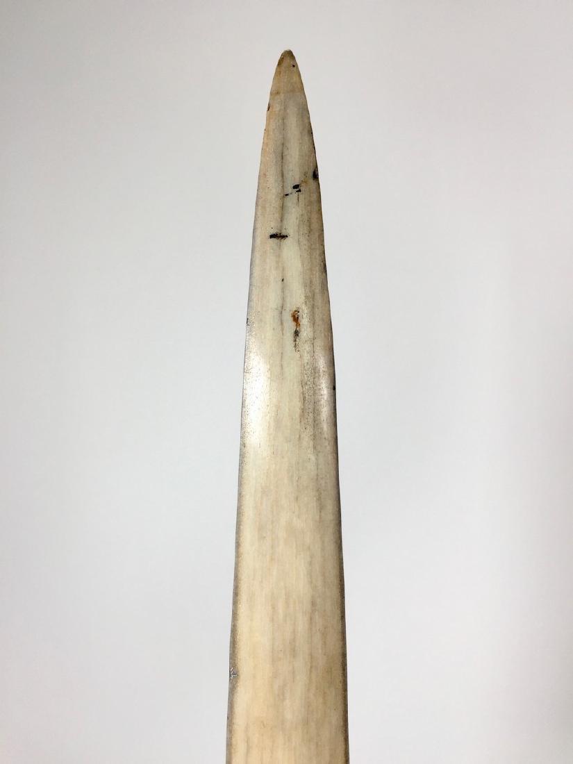 Fine Large Swordfish Tusks with custom stand - 5