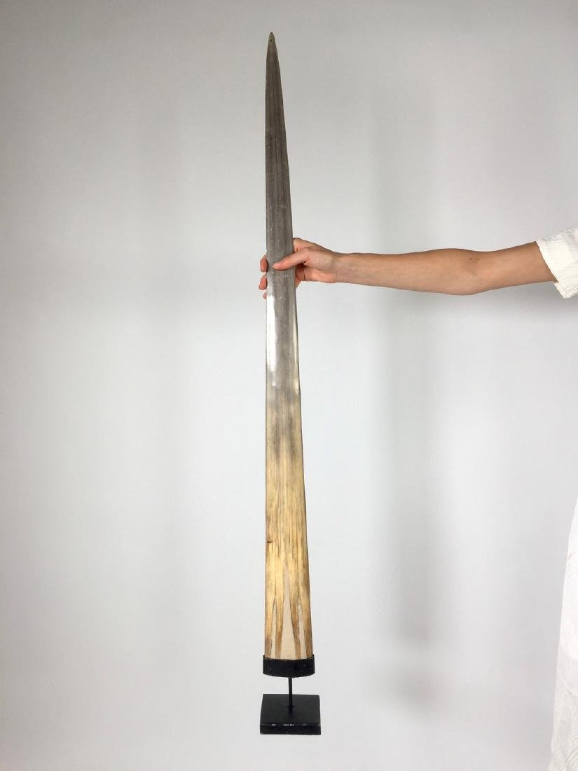 Fine Large Swordfish Tusks with custom stand - 6