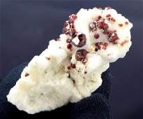 130 Gram Terminated And Undamaged Top Red Color Natural