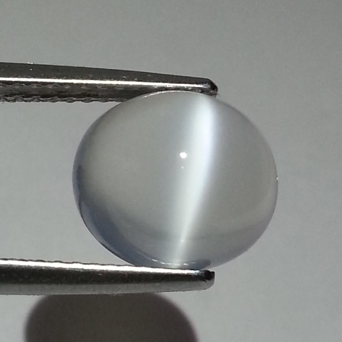 Natural Moonstone Cat's Eye - 7.02 ct