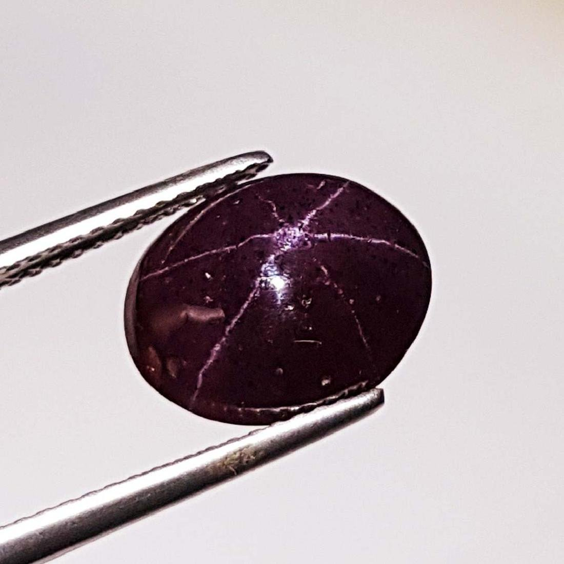 Collective Six Ray Natural Star Garnet - 6.78 ct