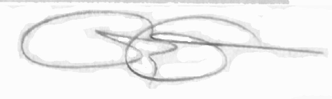 Greg Gorman Offset Lithograph Djimon - 2