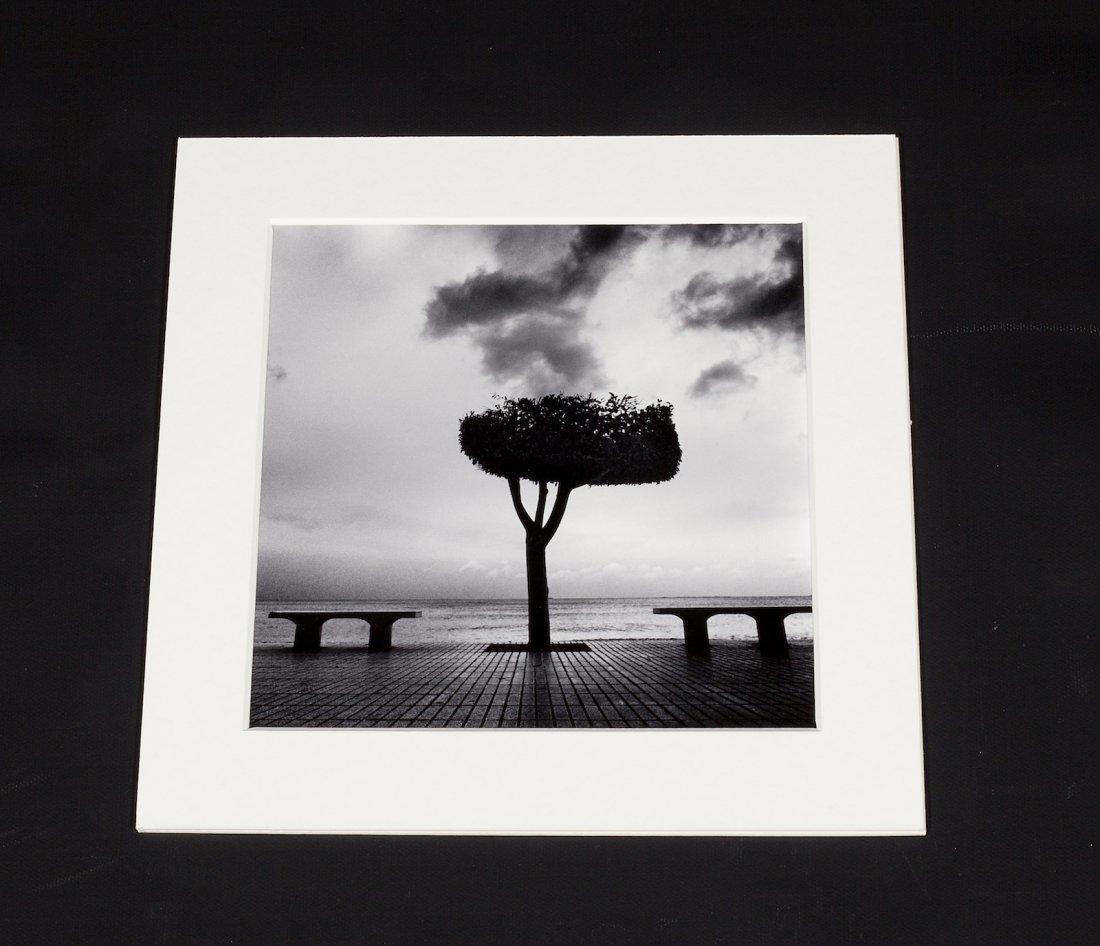 Mitar Terzic (1963) Photo Tales from Lemuria - Ed.1/15 - 6