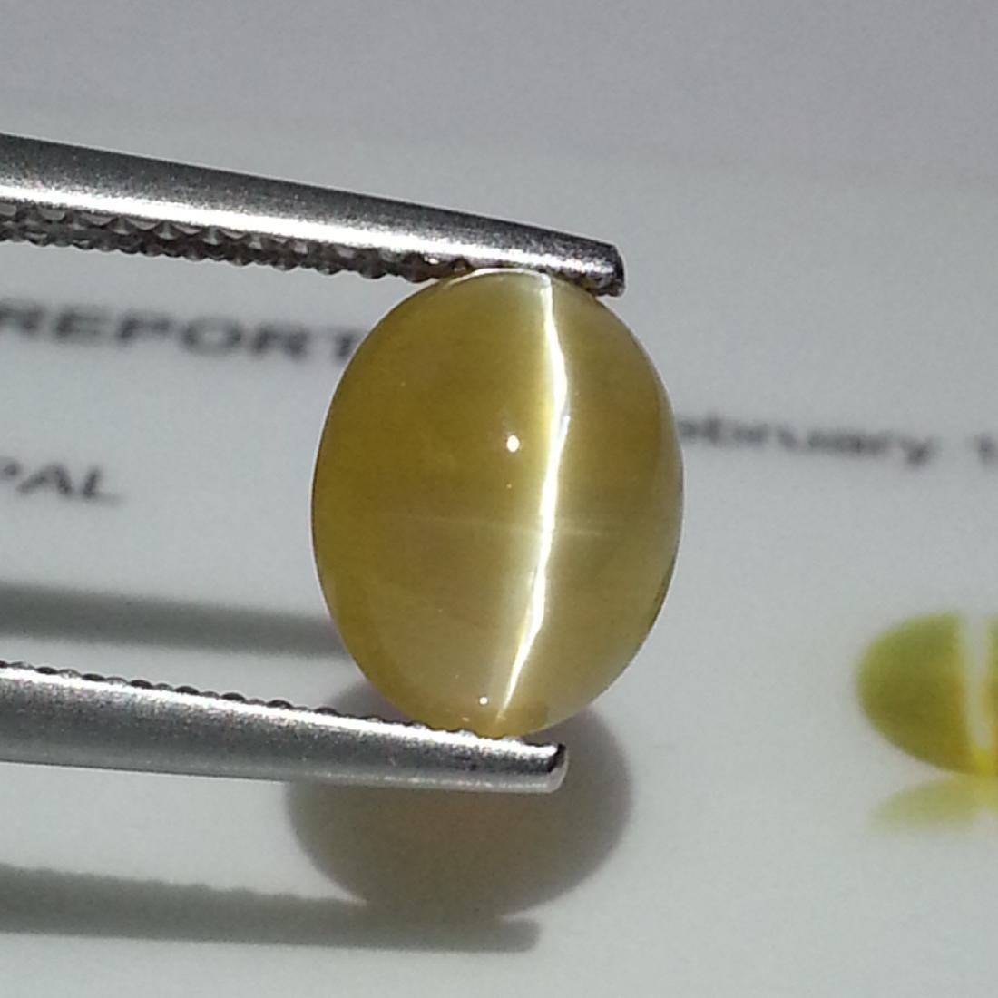 IGI CERTIFIED Opal Cat's Eye - 2.91 ct