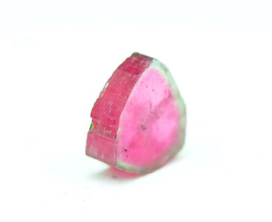 Perfectly Shaped Watermelon Tourmaline Slice from - 4