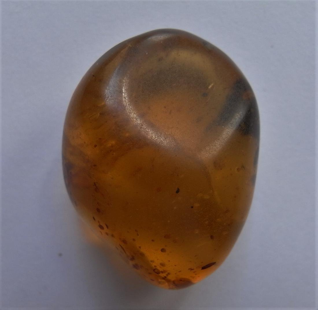 100 Mill. Years old Burmite Amber with plant part - 6